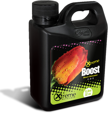Xtreme Boost